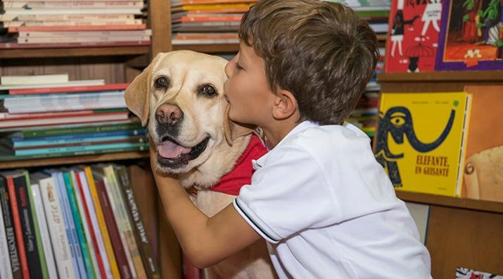 Perros y Letras - De cómo un perro puede hacer que nos gusten los libros o la conexión emocional