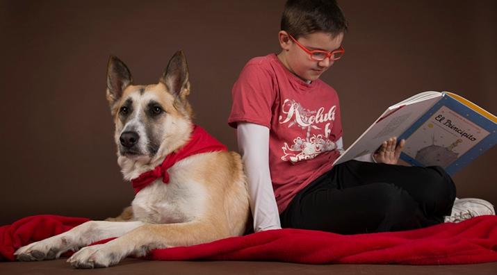 Perros y Letras - Y el perro, ¿qué hace?