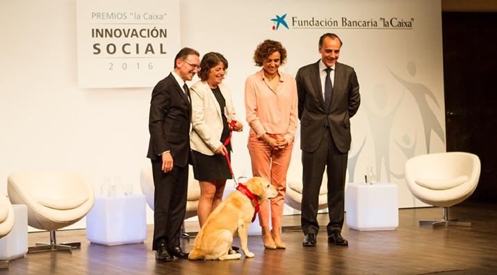 """Perros y Letras - Perros y Letras recibe un premio a la Innovación Social otorgado por Obra Social """"la Caixa""""."""